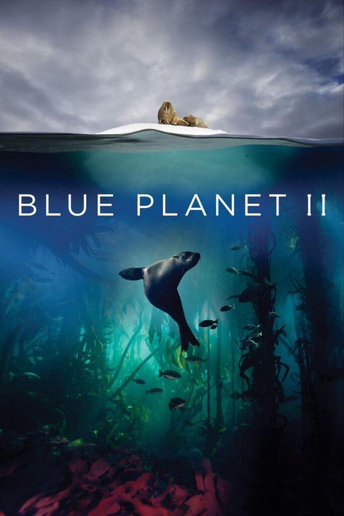 Tome algunos bocadillos (sin plástico), atenúe las luces y deje que un documental de cero desperdicios cambie su vida.  Imagen de Blue Planet II #zerowastedocumentaries #sustainablejungle
